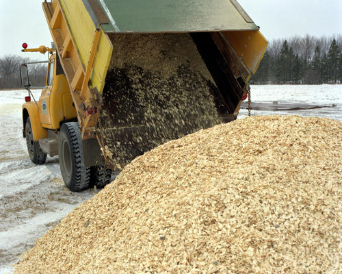 Hybrid poplar wood chips being unloaded in Crookston, Minnesota