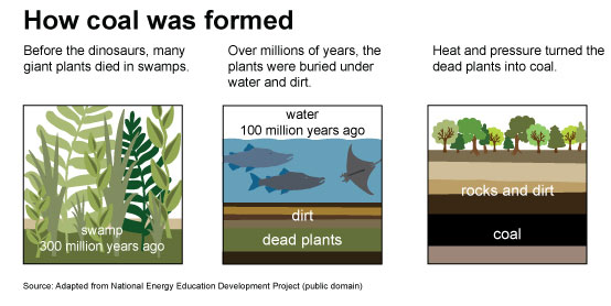 Three images showing how coal was formed. The first image is of a swamp, 300 million years ago. Before the dinosaurs, many giant plants died in swamps. The second image is of water, 100 million years ago. Over millions of years, these plants were buried under water and dirt. The third image is of rocks and dirt over the coal. Heat and pressure turned the dead plants into coal.