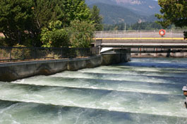 Fish ladder at the Bonneville Dam on the Columbia River separating Washington and Oregon