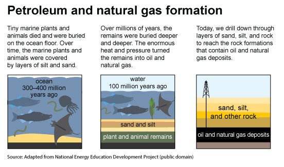 Three images,  about Petroleum & Natural Gas Formation. Adapted from the National Energy Education Development Project. 									The first image is about the Ocean 300 to 400 million years ago. Tiny sea plants and animals died and were buried on the ocean floor. Over time, they were covered by layers of sand and silt. 									The second image is about the Ocean 50 to 100 million years ago. Over millions of years, the remains were buried deeper and deeper. The enormous heat and pressure turned them into oil and gas. 									The third image is about Oil & Gas Deposits. Today, we drill down through layers of sand, silt, and rock to reach the rock formations that contain oil and gas deposits.