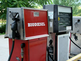 A standard gas and biodiesel pump.