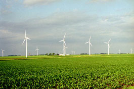 Wind Farm at The Cerro Gordo Project, West of Mason City, Iowa