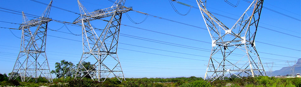 Summer Electricity Industry Outlook