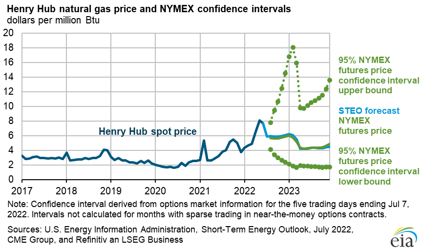 Figure 4: Henry Hub Natural Gas Price