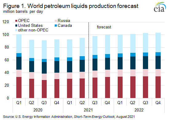 Figure 1. World petroleum liquids production forecast