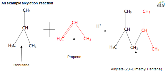 alkylation is an important source for octane in gasoline
