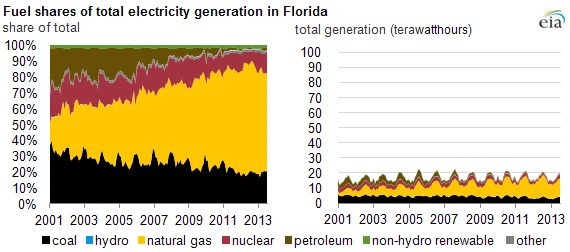 graph of Florida electricity generation, as explained in the article text
