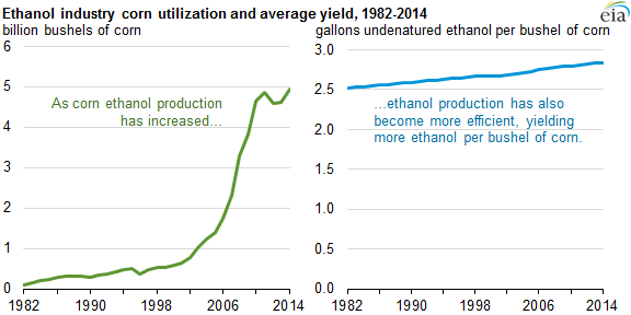 corn ethanol yields continue to improve - today in energy