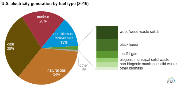 Biomass and waste fuels made up 2% of total US electricity generation in 2016