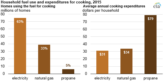 household fuel use and expenditures for cooking